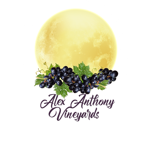 Alex Anthony Logo white moon grapes.png