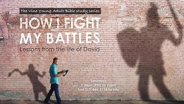 The Vine Bible Study David Series 1080.p