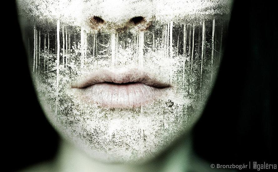 Sűrű csend | Bronzbogár