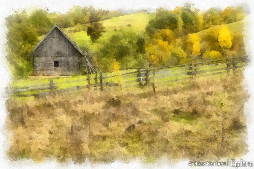 Ház a legelőn | Rácz Norbert