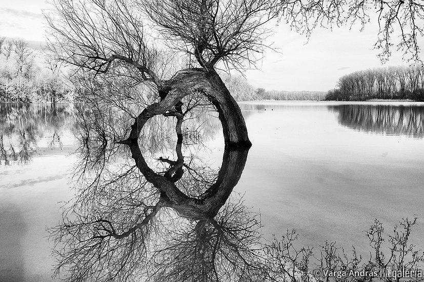 Mártélyi áradás #1 | Varga András