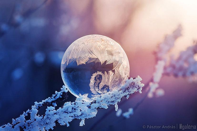Téli csoda | Pásztor András