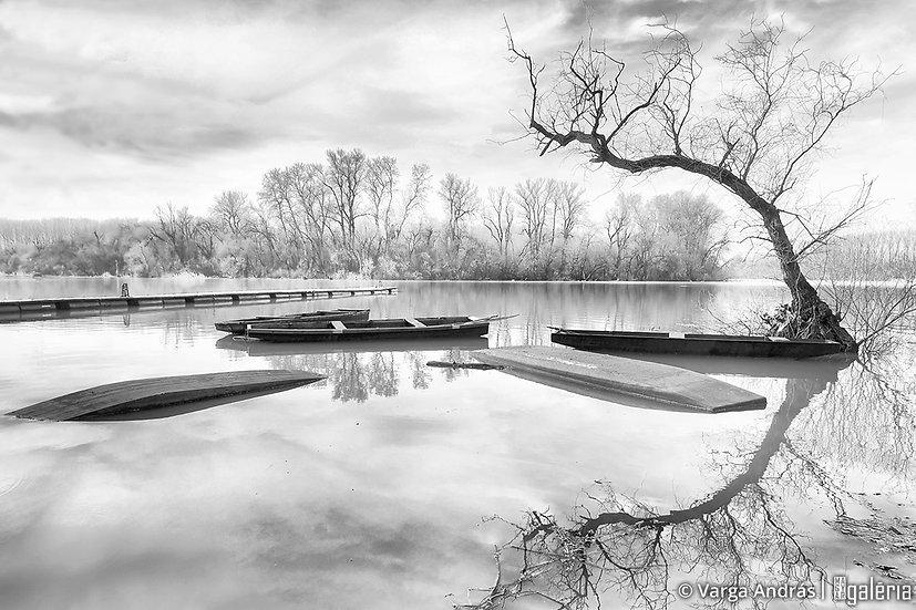 Mártélyi áradás #2 | Varga András