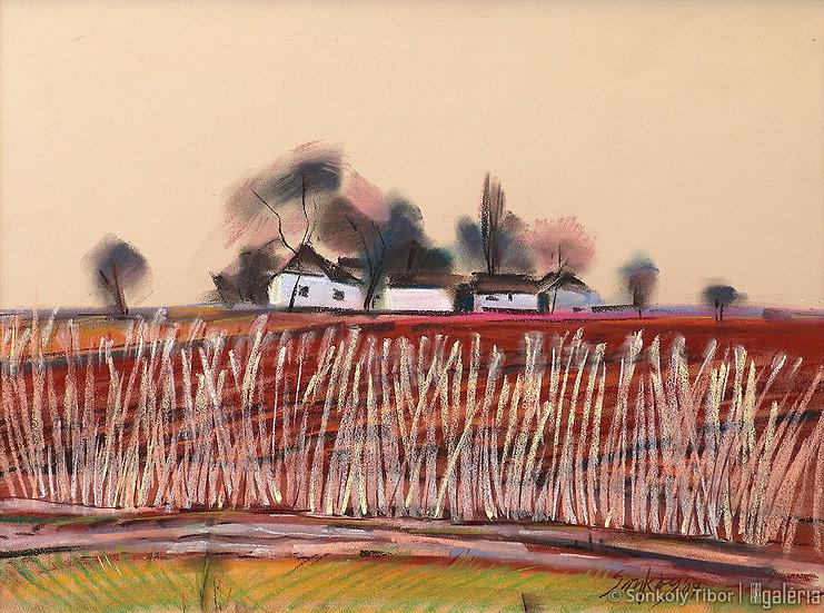 Út mentén | Sonkoly Tibor