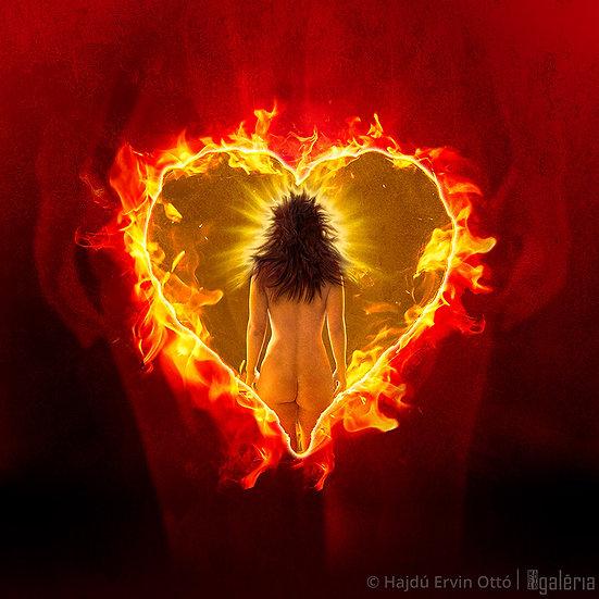 Égő szív | Hajdú Ervin Ottó