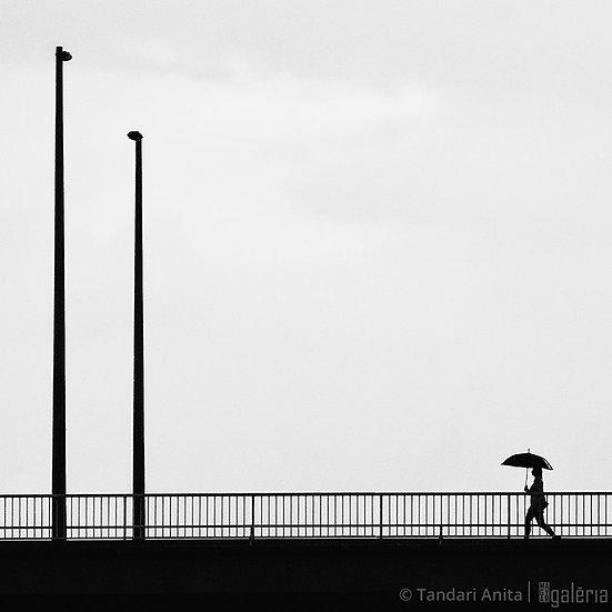 Séta a hídon | Tandari Anita