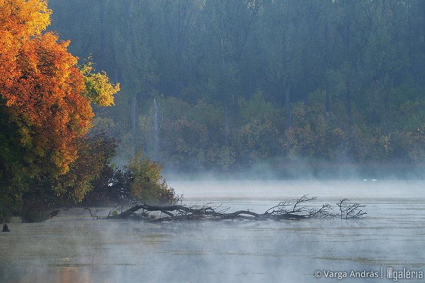 Mártélyi ősz #2 | Varga András