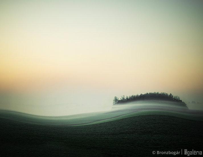 Vénuszdomb | Bronzbogár
