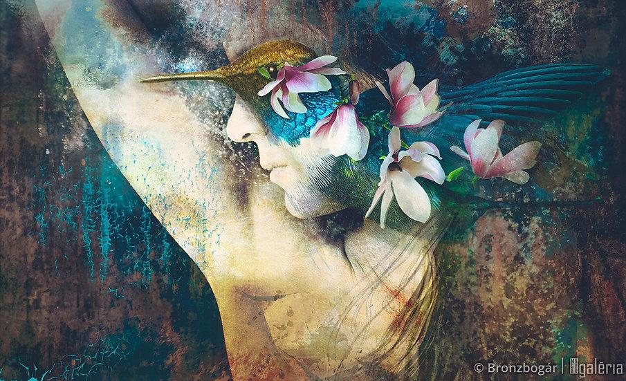 Kolibri | Bronzbogár
