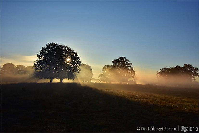 Hajnali fényben | Dr. Kőhegyi Ferenc