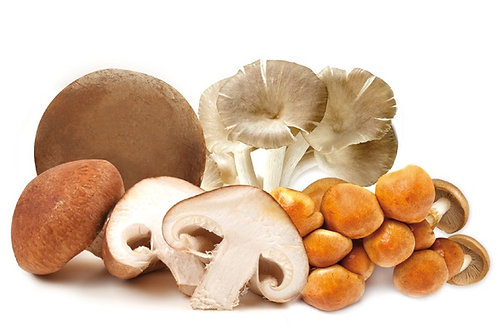 Mix Mushrooms | Μανιτάρια bio 170g