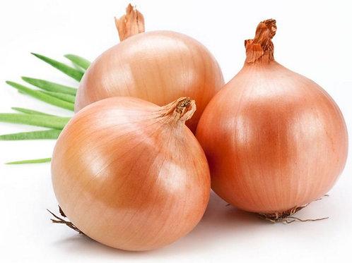 Onions, golden | Κρεμμύδια bio/kg