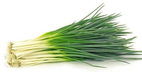 Spring Onions bio, bunch
