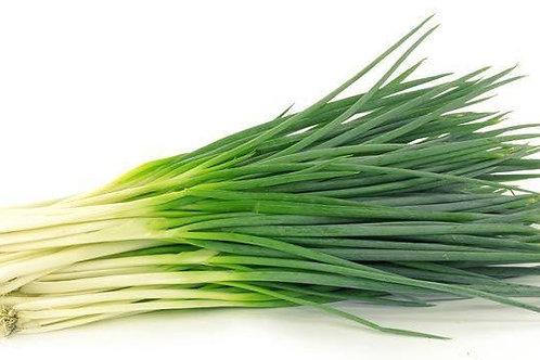Spring Onions bunch | Κρεμμυδάκι φρέσκο