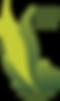 CY_GPP_Logo_2018.png