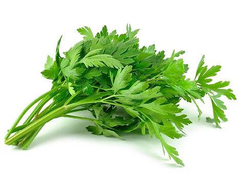 Celery bio, bunch
