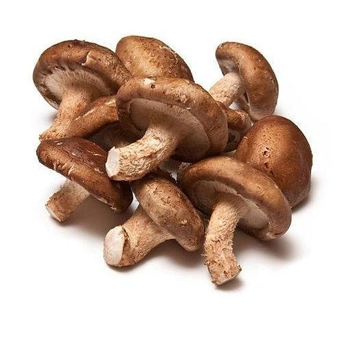 Shitake Mushrooms | Μανιτάρια bio /kg