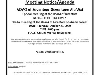 Special Meeting of the Board of Directors