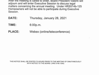 Special Board Meeting - Thursday, January 28, 2021 at 6 PM - Executive Session Only