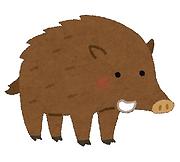 イラスト猪.png