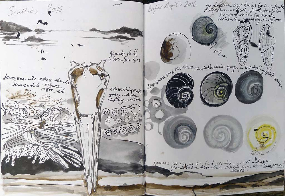 Sketchbook pages: Scilly 2016