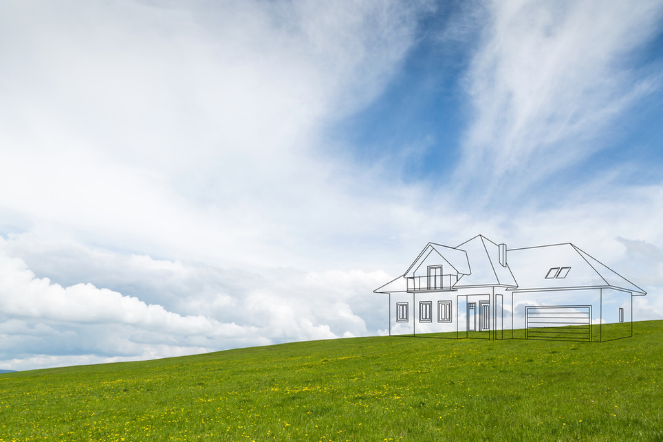 house project on the meadow.jpg