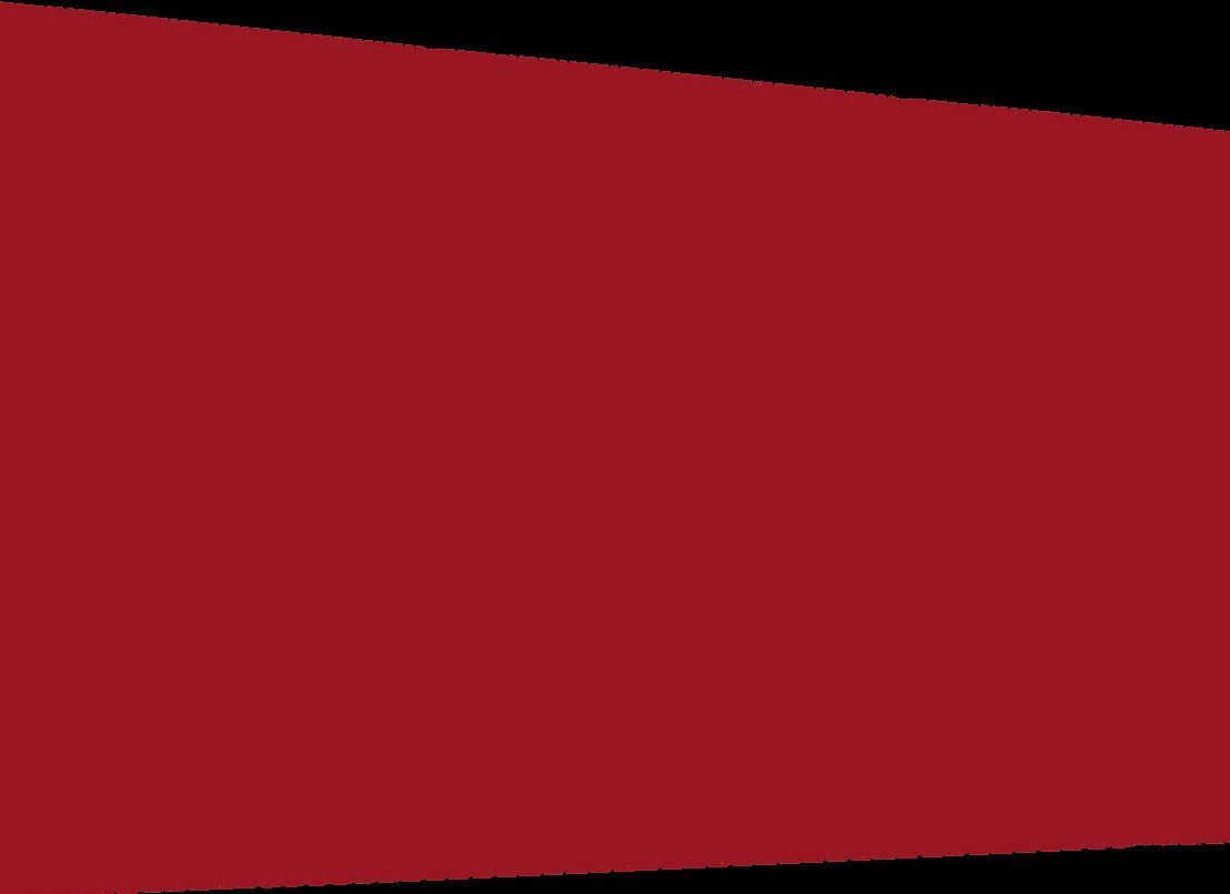 фонкрасный-02.png