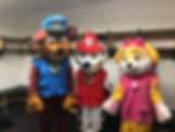 Paw Patrol all 3.JPG
