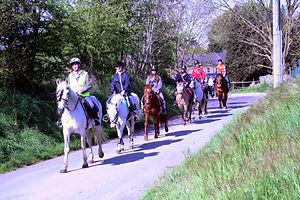 Promenade à cheval dans la campagne de Ligny.le relais centre équestre