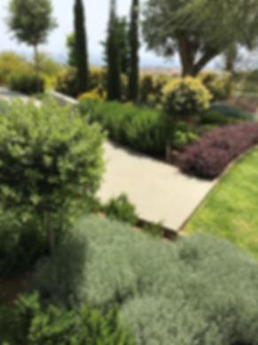 garden6_edited.jpg