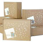 אוסף של קופסאות