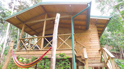 wooden cabin iguana forest lodge