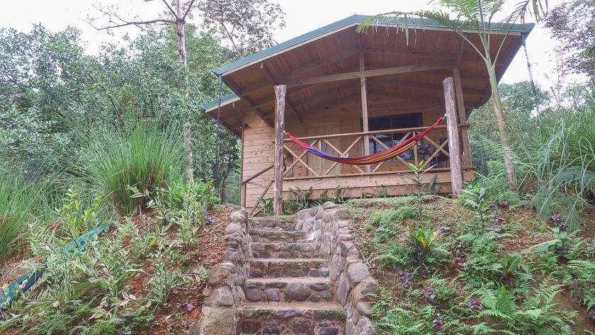 Cabane en bois Forest lodge
