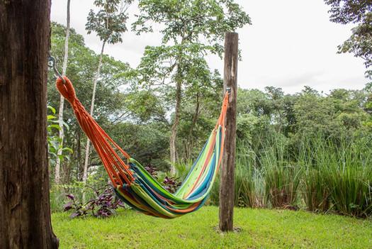 hammock forest lodge costa rica