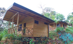 wooden cabin tortuga forest lodge