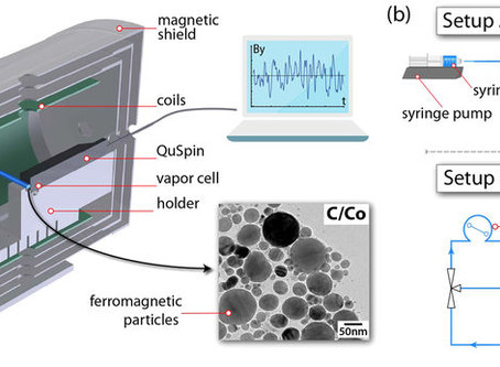New publication on magnetic particle detection