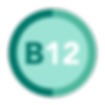 B12_web_icons.png