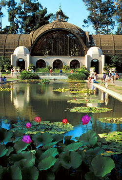 Balboa Park, Lily Pond & Arboretum