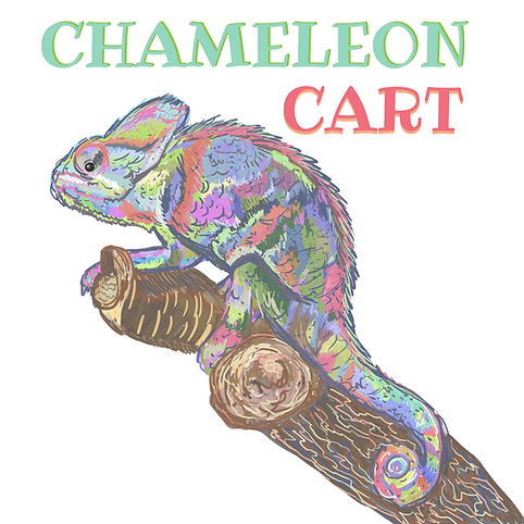 chameleon care kit