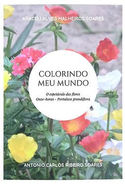 Colorindo meu mundo - O espetáculo das flores onze-horas - portulaca grandilora