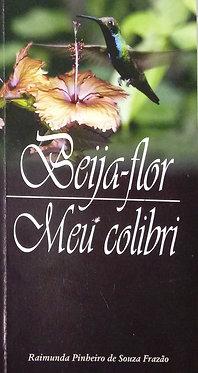 Beija-flor meu colibri