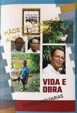 Mãos Calejadas e Alma Poética: Vida e Obra de Marcelino Farias