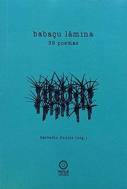 Babaçu Lâmina 39 poemas - Carvalho Junior - Salgado Maranhão