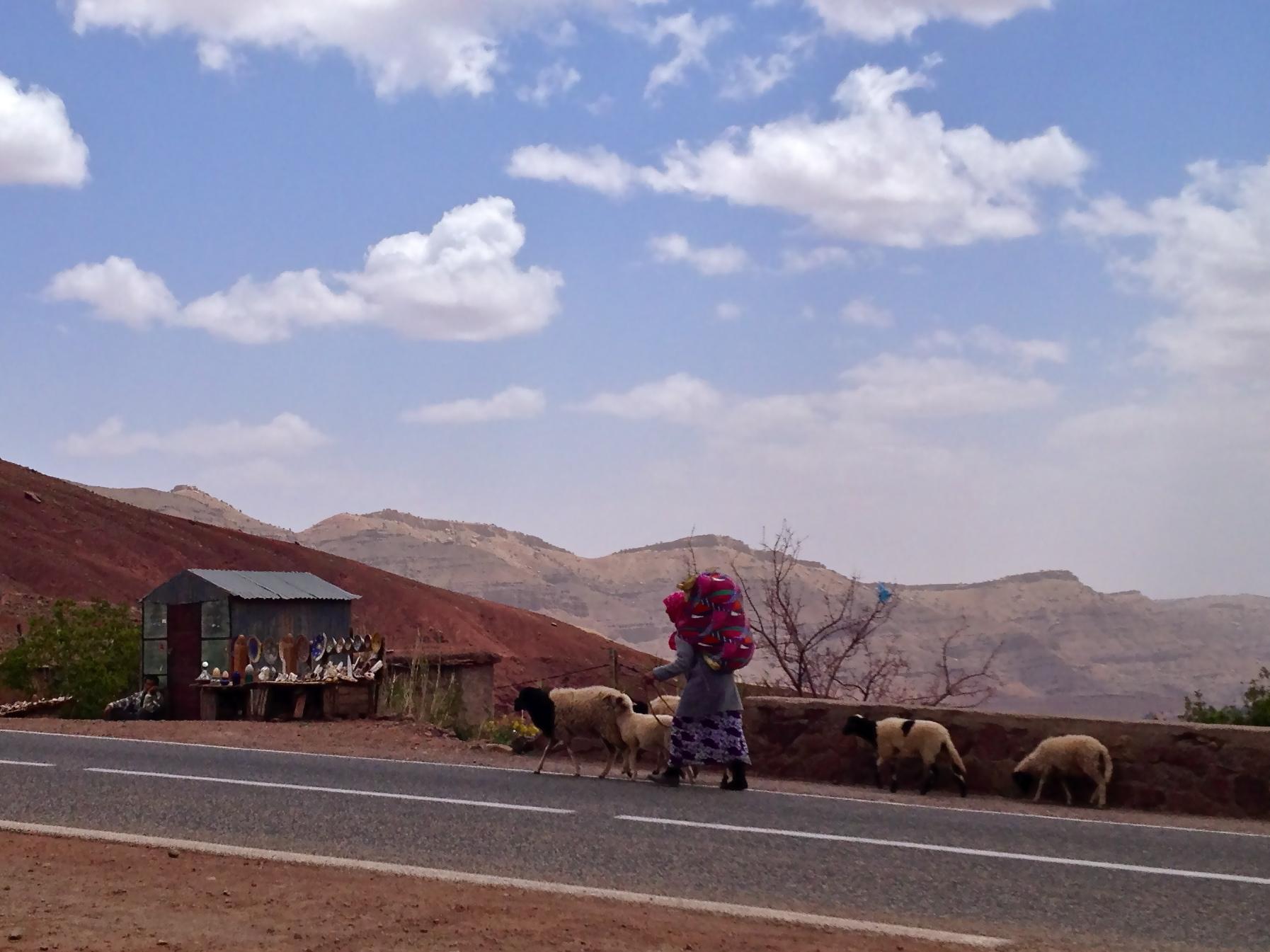 La dame et les moutons