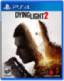 Dying Light 2 PS4 TEMP.jpg