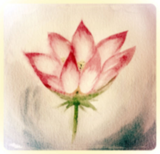 Lotus flower symbol growth therapy change