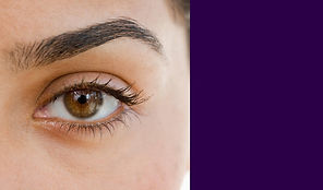 EyelashBrow Tinting Shaping Course Beauty Training