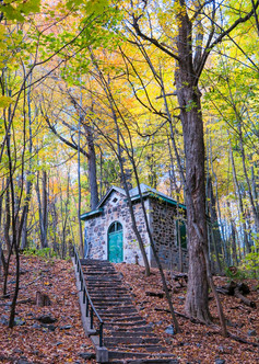 Little House in the Woods