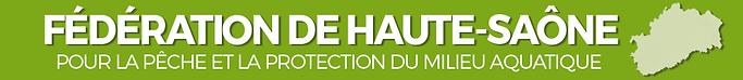 logo FDP 70.PNG
