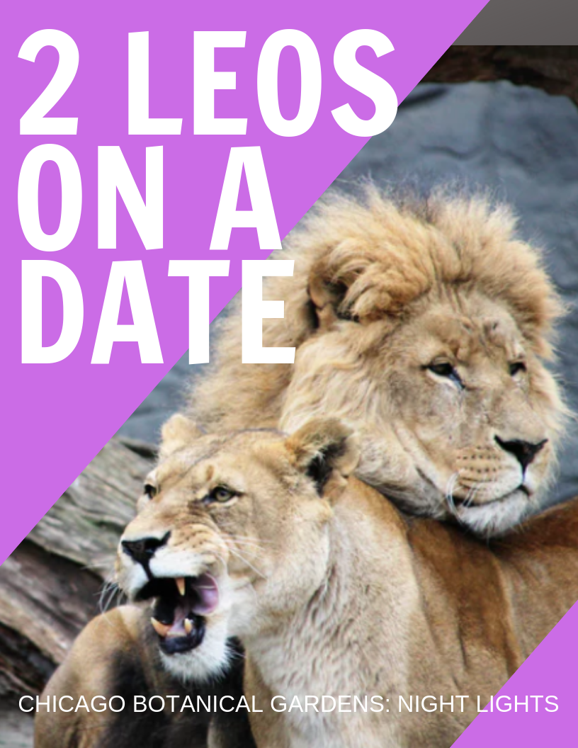 Two leos dating good opening lines for online dating